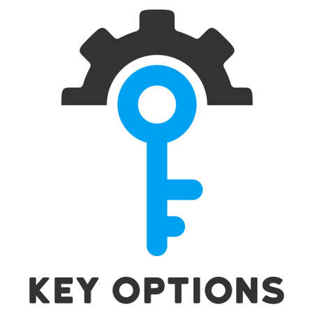 caption: Key Options vector icon with caption. Style is a flat symbol with rounded angles, light blue and gray colors. Illustration