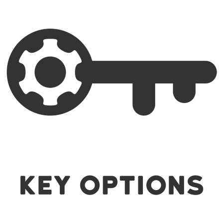 option key: Key Options vector icon with caption. Style is a flat symbol with rounded angles, light blue and gray colors. Illustration