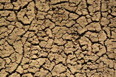 scorched: Scorched Earth. Dead Sand Area. Ecological Catastrophe.