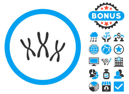 chromosomes: Chromosomes icon with bonus pictures. Vector illustration style is flat iconic bicolor symbols, blue and gray colors, white background. Illustration