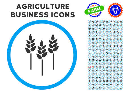 rye: Wheat Ears rounded icon with agriculture business icon clipart. Vector illustration style is a flat iconic symbol inside a circle, blue and gray colors. Designed for web and software interfaces. Illustration