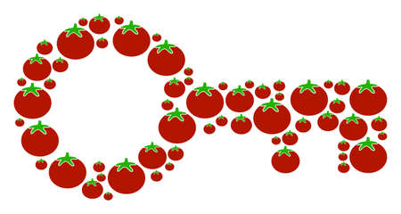 Key composition of tomatoes in variable sizes. Vector tomatoes symbols are combined into key mosaic. Tomatoes vector design concept.
