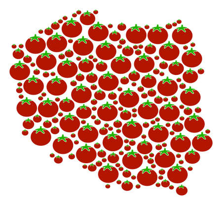 Poland Map mosaic of tomatoes in variable sizes. Vector tomato objects are composed into poland map collage. Vegetable vector design concept. Illustration