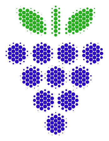 Halftone dot Grapes icon. Pictogram on a white background. Vector mosaic of grapes icon organized of circle dots.  イラスト・ベクター素材