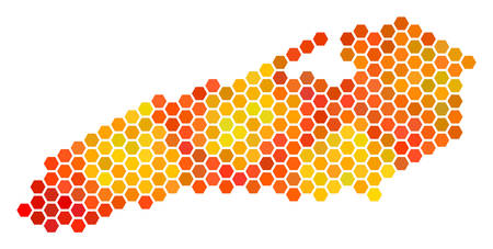 Ontario Lake map. Vector honeycomb territorial plan drawn with hot color variations. Abstract Ontario Lake map concept is constructed of fire honeycomb blots.