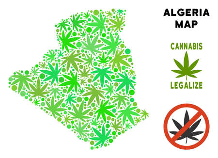 Royalty free marijuana Algeria map mosaic of weed leaves. Concept for narcotic addiction campaign against drugs dependence or cannabis legalize.