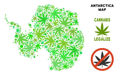 Royalty free cannabis Antarctica map collage of weed leaves. Template for narcotic addiction campaign against drugs dependence or cannabis legalize.