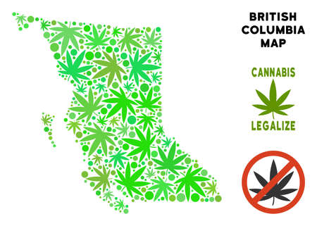 Royalty free cannabis British Columbia Province map mosaic of weed leaves. Concept for narcotic addiction campaign against drugs dependence or cannabis legalize. Illustration