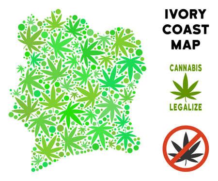 Royalty free cannabis Ivory Coast map mosaic of weed leaves. Concept for narcotic addiction campaign against drugs dependence or cannabis legalize. Vettoriali