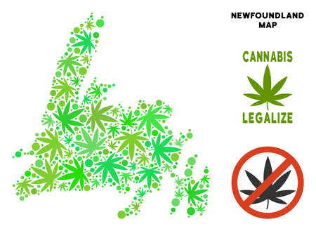 Royalty free cannabis Newfoundland Island map collage of weed leaves. Template for narcotic addiction campaign against drugs dependence or cannabis legalize. Illustration