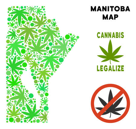 Royalty free marijuana Manitoba Province map collage of weed leaves. Template for narcotic addiction campaign against drugs dependence or cannabis legalize. Illustration