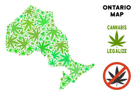 Royalty free cannabis Ontario Province map collage of weed leaves. Template for narcotic addiction campaign against drugs dependence or cannabis legalize. Vettoriali