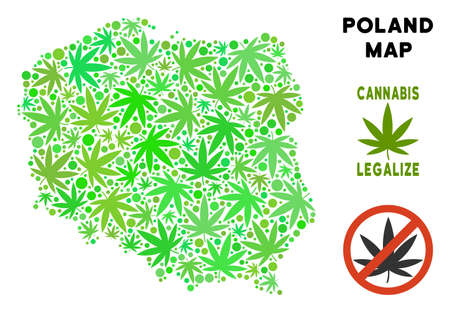 Royalty free cannabis Poland map mosaic of weed leaves. Template for narcotic addiction campaign against drugs dependence or cannabis legalize. Illustration