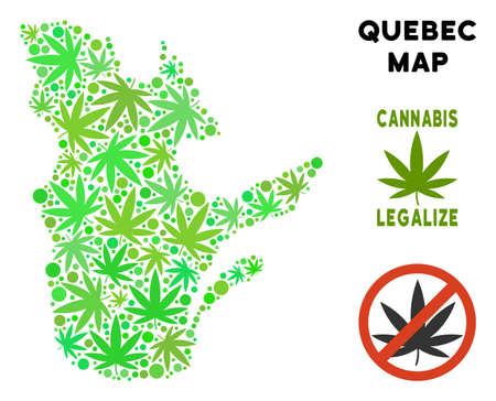 Royalty free marijuana Quebec Province map mosaic of weed leaves. Concept for narcotic addiction campaign against drugs dependence or cannabis legalize.
