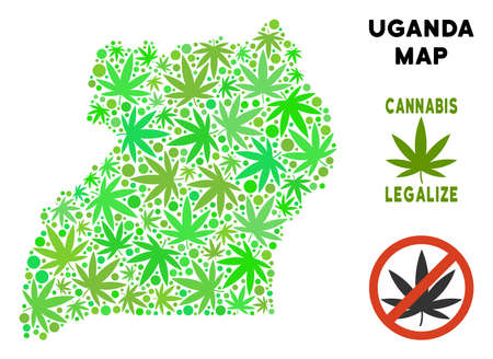Royalty free cannabis Uganda map mosaic of weed leaves. Template for narcotic addiction campaign against drugs dependence or cannabis legalize. Ilustrace