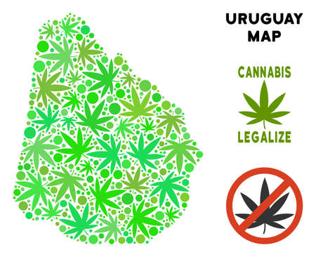 Royalty free marijuana Uruguay map composition of weed leaves. Concept for narcotic addiction campaign against drugs dependence or cannabis legalize. Vettoriali