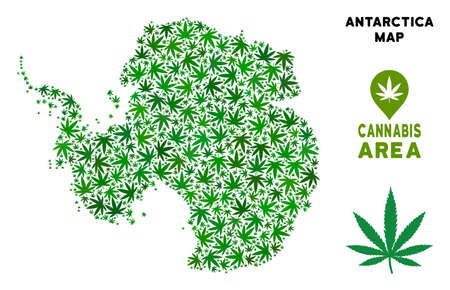 Weed Antarctica map collage of marijuana leaves. Narcotic distribution template. Vector Antarctica map is constructed of green herbal leaves. Abstract territory scheme in green color hues.