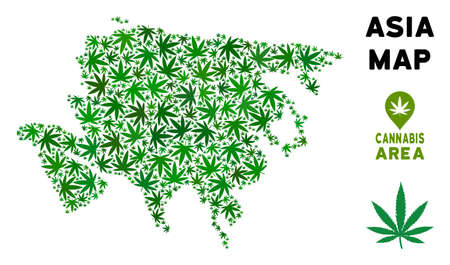 Ganja Asia map composition of marijuana leaves. Narcotic addiction template. Vector Asia map is formed of green cannabis leaves. Abstract territory plan in green color tints.