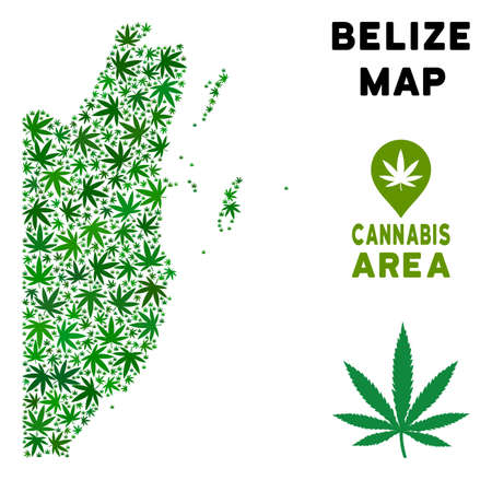 Weed Belize map mosaic of marijuana leaves. Narcotic distribution concept. Vector Belize map is constructed of green weed leaves. Abstract geographic scheme in green color tinges.