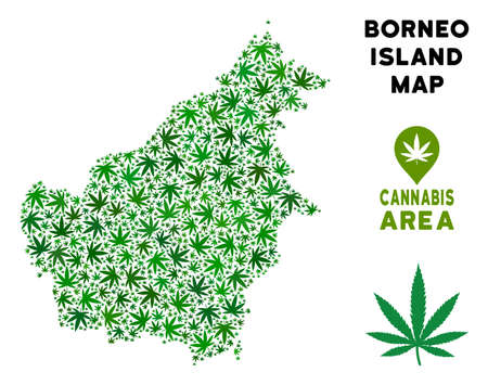 Cannabis Borneo Island map collage of marijuana leaves. Narcotic distribution template. Vector Borneo Island map is designed from green cannabis leaves.