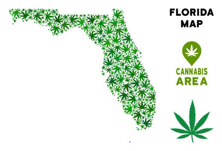 Ganja Florida map mosaic of marijuana leaves. Narcotic distribution template. Vector Florida map is formed of green cannabis leaves. Abstract territory scheme in green color hues.