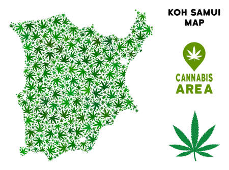 Ganja Koh Samui map composition of marijuana leaves. Narcotic dependence template. Vector Koh Samui map is shaped of green herbal leaves. Abstract territory scheme in green color tinges.