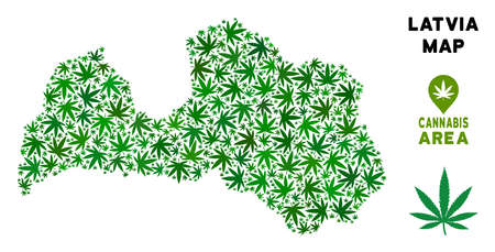 Cannabis Latvia map collage of marijuana leaves. Narcotic distribution concept. Vector Latvia map is organized of green cannabis leaves. Abstract geographic plan in green color hues. 向量圖像