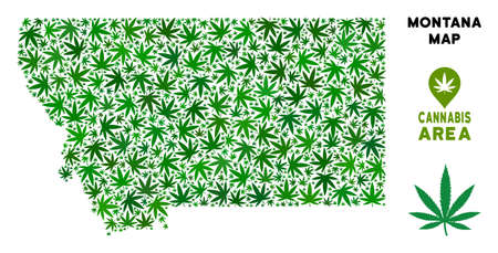 Weed Montana State map composition of marijuana leaves. Narcotic addiction template. Vector Montana State map is made of green cannabis leaves. Abstract territorial plan in green color variations.