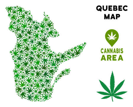 Weed Quebec Province map mosaic of marijuana leaves. Narcotic distribution template. Vector Quebec Province map is composed of green ganja leaves. Abstract geographic scheme in green color variations.