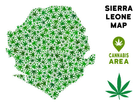 Ganja Sierra Leone map mosaic of marijuana leaves. Narcotic addiction template. Vector Sierra Leone map is composed of green ganja leaves. Abstract territorial plan in green color hues.