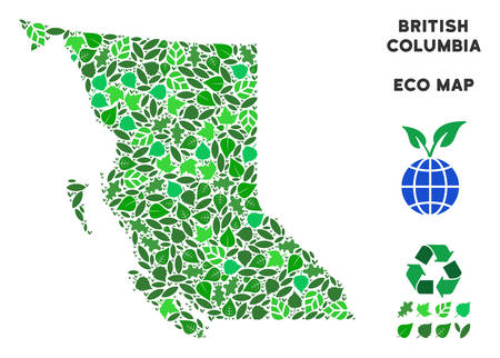 Eco British Columbia Province map composition of herbal leaves in green color shades. Ecological environment vector template. British Columbia Province map is formed of green herbal elements. 向量圖像