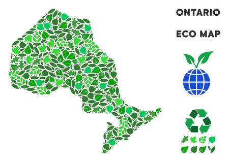 Ecology Ontario Province map mosaic of plant leaves in green color variations. Ecological environment vector template. Ontario Province map is formed of green herbal parts.