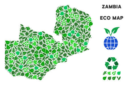 Eco Zambia map composition of herbal leaves in green color tinges. Ecological environment vector template. Zambia map is done with green herbal items. Abstract territorial scheme. Illustration
