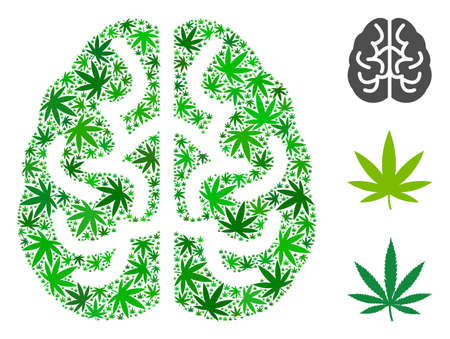 Brain mosaic of cannabis leaves in various sizes and green tints. Vector flat cannabis items are grouped into brain collage. Drugs vector illustration.