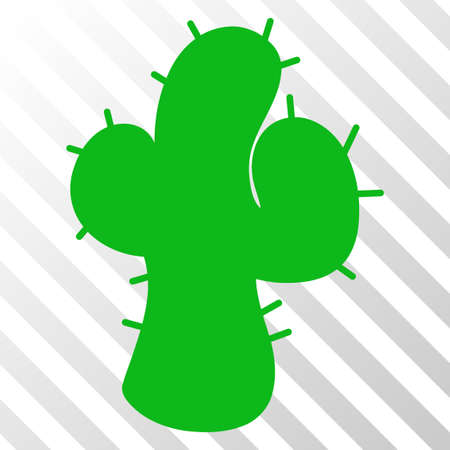Cacti vector icon. An illustration style is a flat iconic symbol on a hatch transparent background.