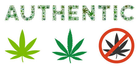 Authentic text composition of hemp leaves in variable sizes and green tinges. Vector flat ganja objects are combined into Authentic text composition. Addiction vector design concept. Illustration