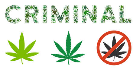 Criminal text collage of cannabis leaves in variable sizes and green tints. Vector flat cannabis leaves are organized into Criminal text collage. Narcotic vector design concept.