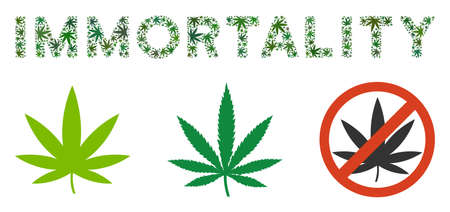 Immortality caption collage of weed leaves in variable sizes and green hues. Vector flat weed icons are united into Immortality caption mosaic. Addiction vector illustration.
