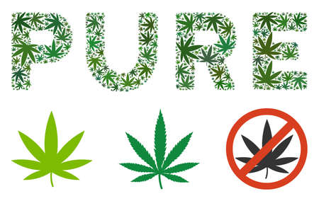 Pure caption collage of weed leaves in various sizes and green variations. Vector flat grass elements are composed into Pure caption collage. Narcotic vector design concept. Illustration