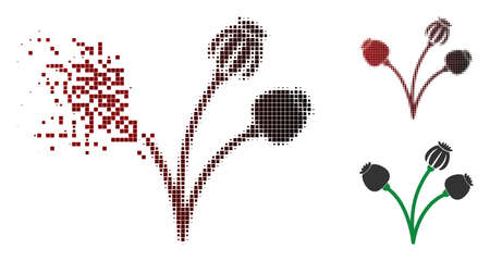 Opium poppy plant icon in sparkle, pixelated halftone and undamaged entire versions. Pixels are composed into vector sparkle opium poppy plant shape.
