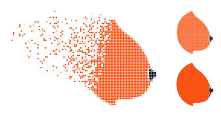 Female tit icon in disappearing, dotted halftone and undamaged whole versions. Fragments are grouped into vector disappearing female tit pictogram. Disappearing effect involves rectangle dots. Illustration
