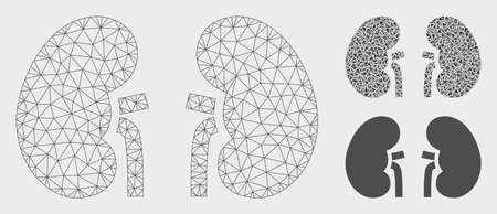 Mesh kidneys model with triangle mosaic icon. Wire carcass polygonal network of kidneys. Vector collage of triangle elements in variable sizes, and color tinges. Abstract flat mesh kidneys,