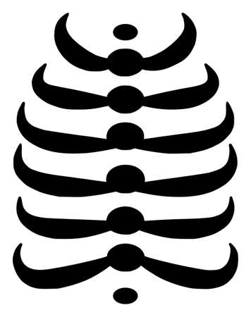 Vector skeleton ribs flat icon. Vector pictogram style is a flat symbol skeleton ribs icon on a white background. 向量圖像