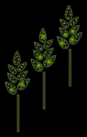 Glowing mesh wheat plants with glare effect. Abstract illuminated model of wheat plants icon. Shiny wire carcass polygonal mesh wheat plants. Vector abstraction on a black background. Illustration