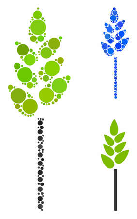 Wheat ear composition for wheat ear icon of round dots in different sizes and shades. Vector round dots are composed into blue illustration. Dotted wheat ear icon in usual and blue versions. Illustration