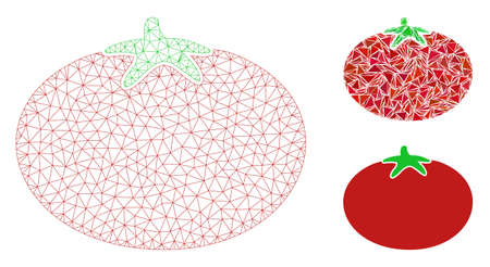 Mesh tomato model with triangle mosaic icon. Wire carcass polygonal mesh of tomato. Vector composition of triangle elements in variable sizes, and color shades. Abstract flat mesh tomato,