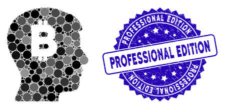 Collage mental Bitcoin icon and corroded stamp seal with Professional Edition text. Mosaic vector is created with mental Bitcoin icon and with random circle spots.