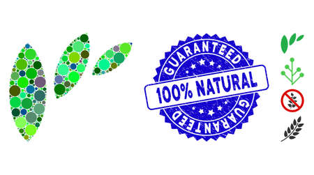 Mosaic flora leaf abstraction icon and rubber stamp seal with Guaranteed 100% Natural caption. Mosaic vector is formed with flora leaf abstraction icon and with randomized circle spots. Vecteurs