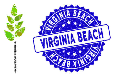 Mosaic wheat ear icon and corroded stamp seal with Virginia Beach phrase. Mosaic vector is composed with wheat ear icon and with scattered oval spots. Virginia Beach stamp seal uses blue color,