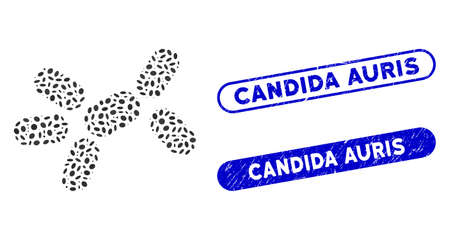 Mosaic yeast and corroded stamp seals with Candida Auris phrase. Mosaic vector yeast is designed with random oval spots. Candida Auris stamp seals use blue color, and have round rectangle shape.